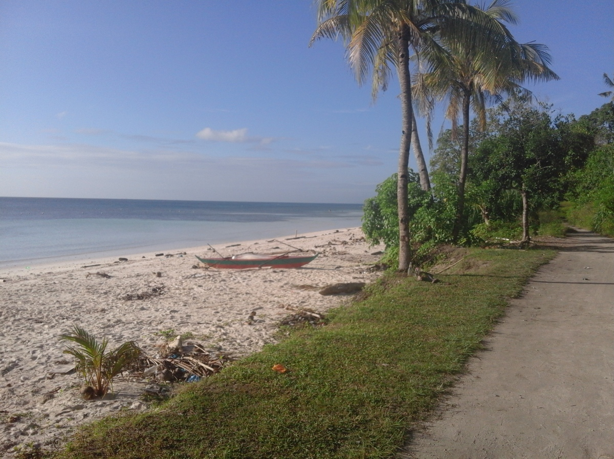 BEACH PROPERTY - ALBUR, BOHOL