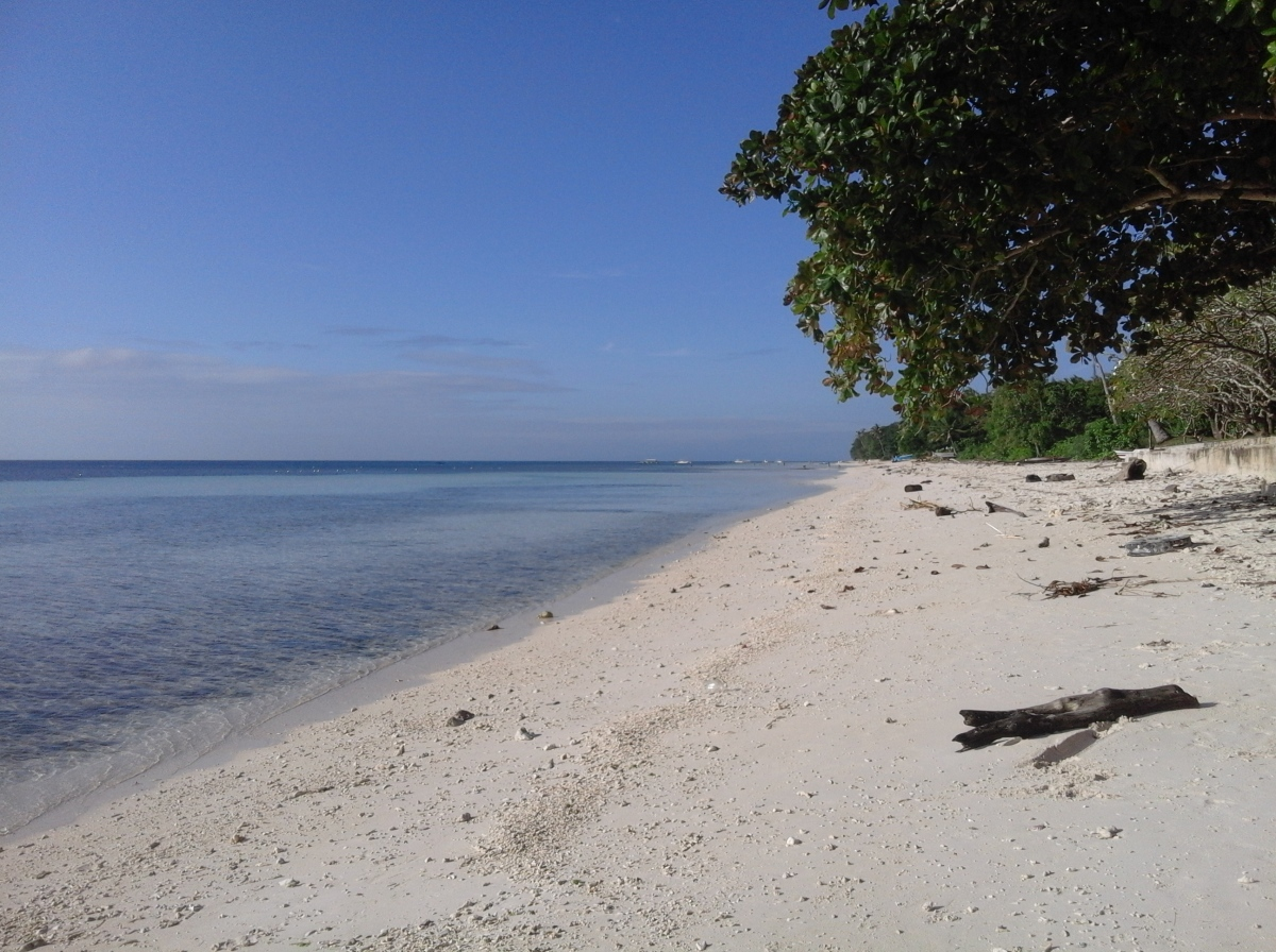 Bohol beachfront cebu real estate condo house and lot for Beach property philippines