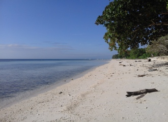 beachfront-lot-for-sale-in-libaong-panglao-bohol-img-8