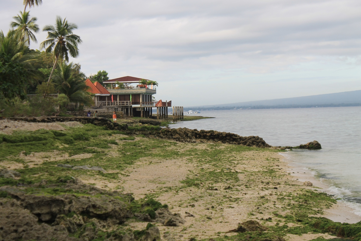 Beachfront Lot in Canlumakad, Santander Cebu - Photos and Videos