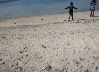 Beachfront-Lot-For-Sale-Looc-Santander-Cebu-Philippines