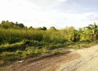 meachel.com-lot-only-for-sale-kriscynth-homes-lapu-lapu-img5