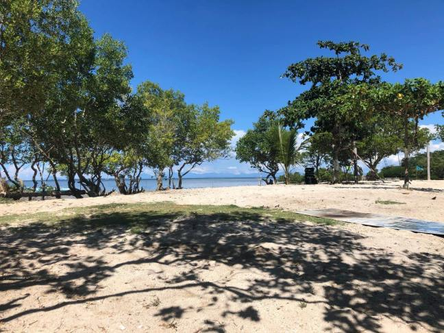 beachfront-property-for-sale-daanbantayan-island-2020-beach-view-1